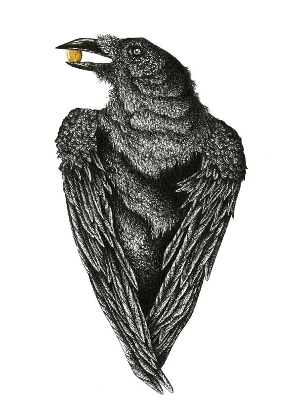 Maldo_crow